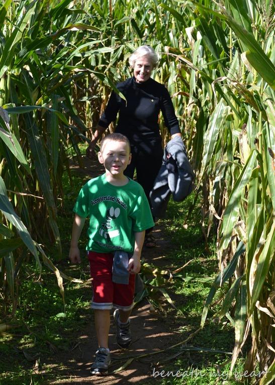 corn maze 071