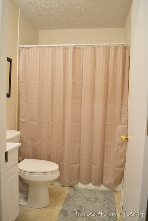 Removing A Sliding Shower Door