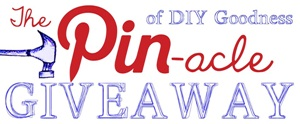 "The ""PIN""acle of DIY Goodness Giveaway!"