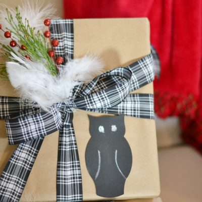 Owl Themed Gift Wrapping and DIY Ornament