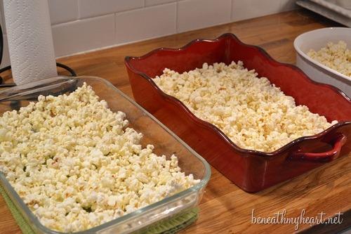 popcorn 049