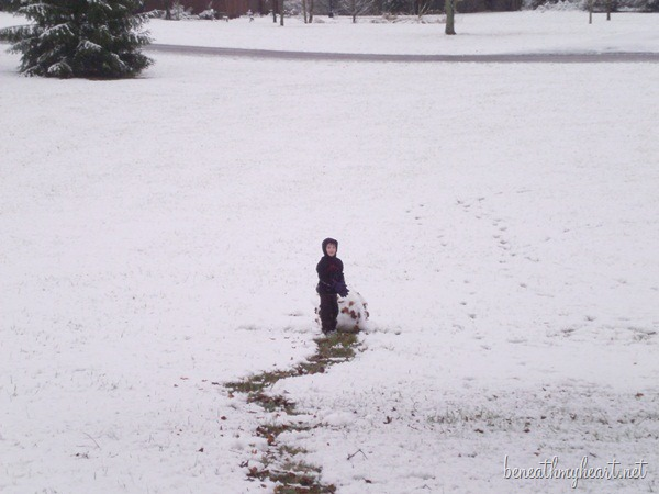 Ky Snow 001
