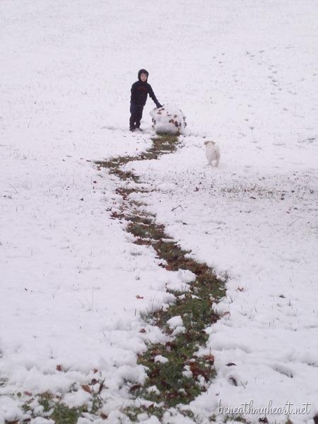 Ky Snow 002