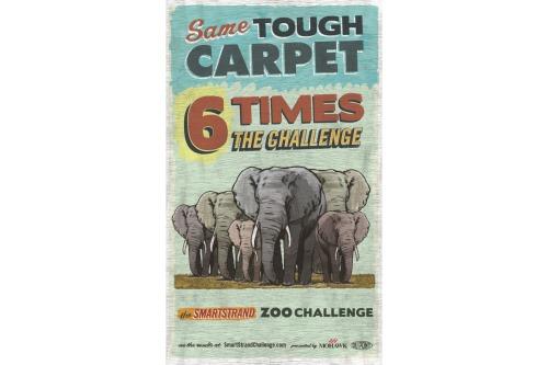 smartstrand-zoo-challenge-poster