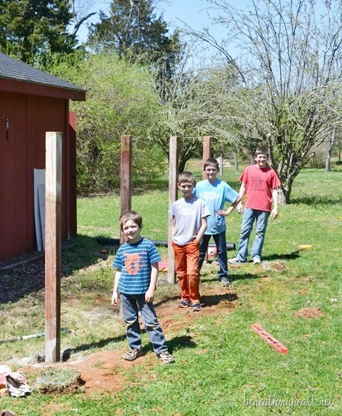 mailbox-henhouse 104