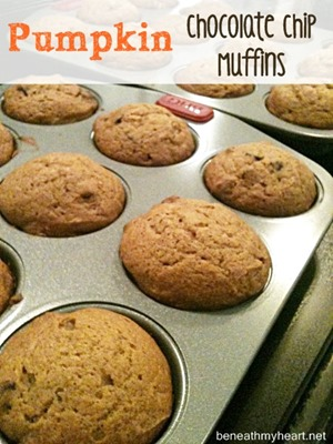 pumpkin choc chip muffins