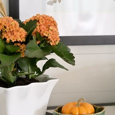 Adding Fall Touches to the Master Bedroom (GIVEAWAY)