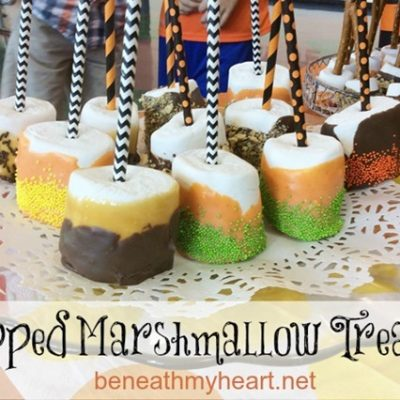 Dipped Marshmallow Treats (for Adam's school fair)