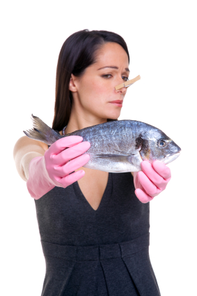A woman holding a fish at arms length whilst wearing pink rubber gloves and a clothes peg on her nose. Isolated on white background, focus on the fish.