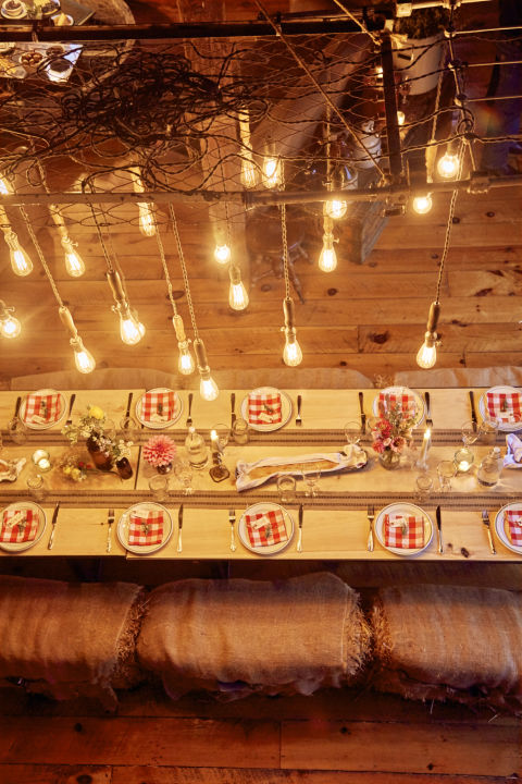 barn-party-lights-0616