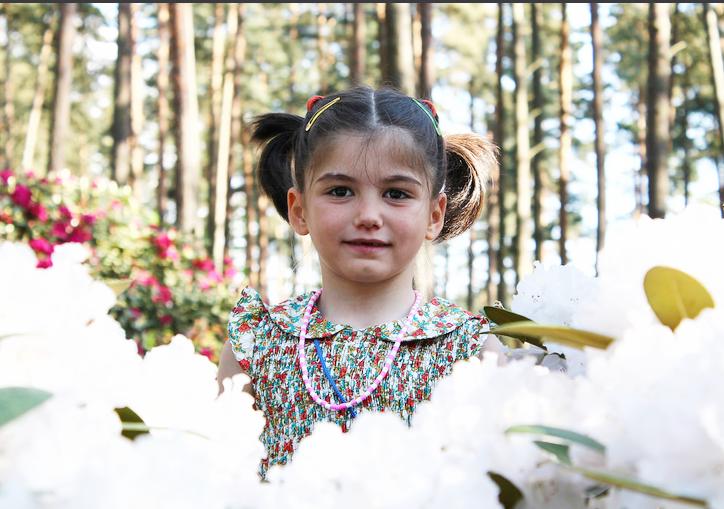 sanija-flowers