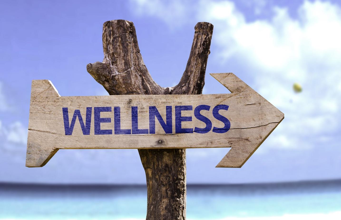 My Journey to Wellness – Part 2