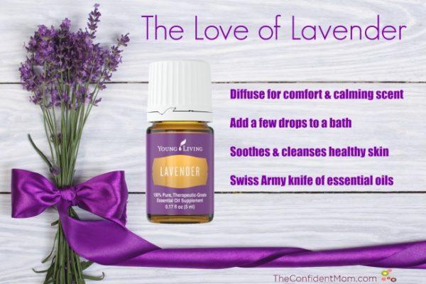 Lavender-e1435273455947