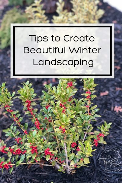 Tips to Create Beautiful Winter Landscaping